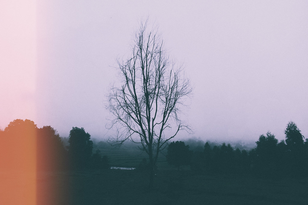 FoggyWeather