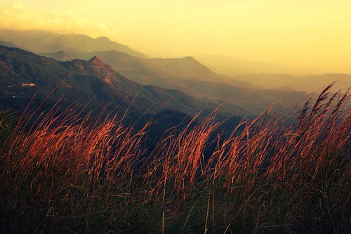 mist mountains eveningsun kerala southindia ponmudi easternghats seemakk