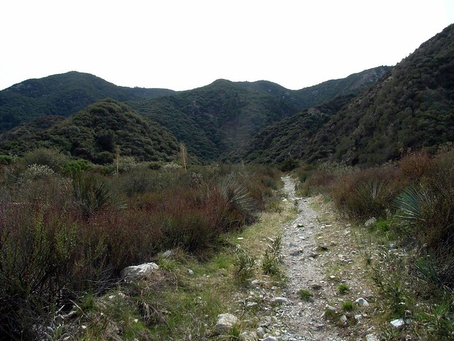 Stone Canyon Trail