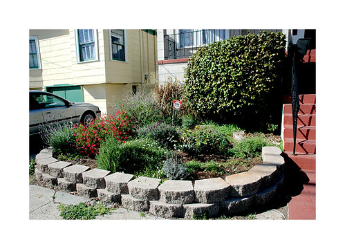 Landscaping Small Front Yard Townhouse : Front yard townhome landscaping joy studio design