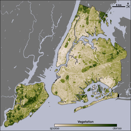 NASA Map of Surface Vegetation in New York City