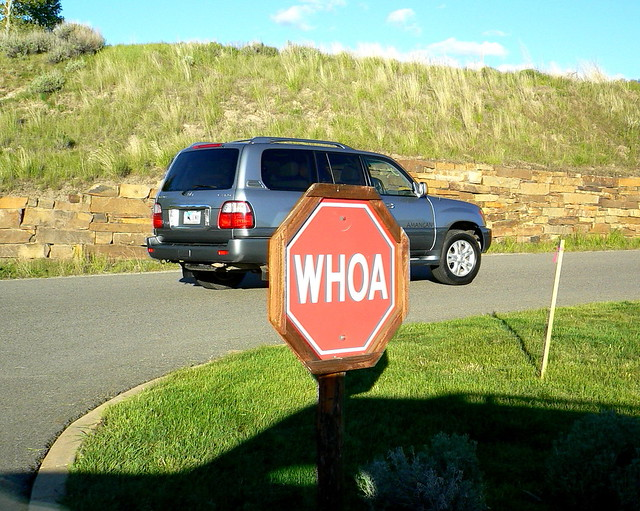 Jackson Hole Airport Car Rental Jac Airport Car Hire Car Rental