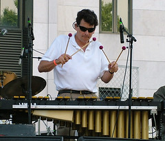 drums(0.0), drum(0.0), skin-head percussion instrument(0.0), percussion(1.0), vibraphone(1.0), xylophone(1.0), musician(1.0), music(1.0),