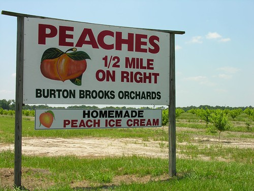 A Peachy Roadside Stop