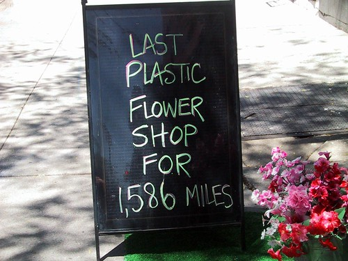 last plastic flower shop