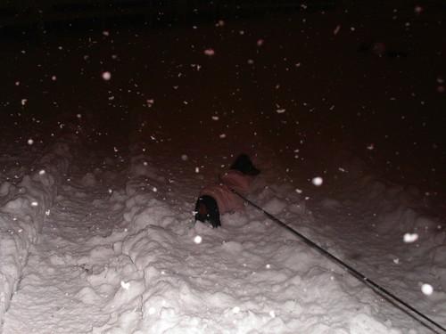 Chevelle-snow