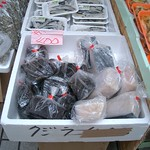 Whale Meat on Sale
