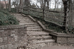 IMG_7854: Mount Vernon Path