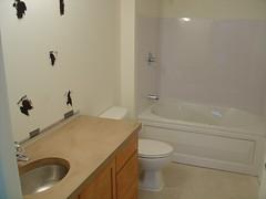 master bathroom, untiled!