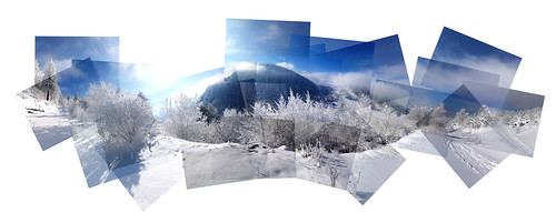 Panography of a winter landscape