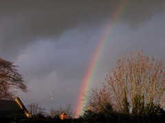 rainbow,