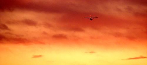 sunset sky plane evening flying
