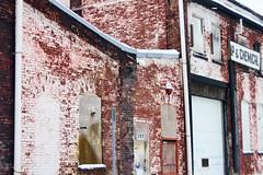 More Urban Decay