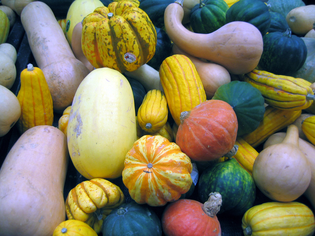 winter squash all varieties, cooked, baked, without salt