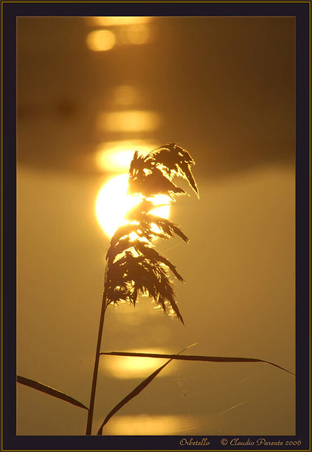 L'ultimo sole