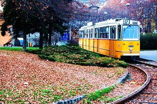 the same streetcar called desire?