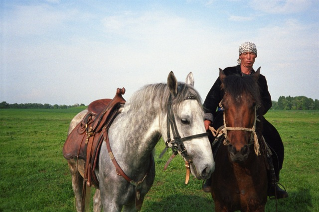 Konie Kazachstan