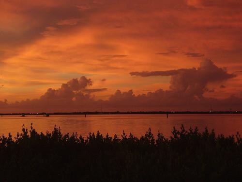 sunset harbor charlotte