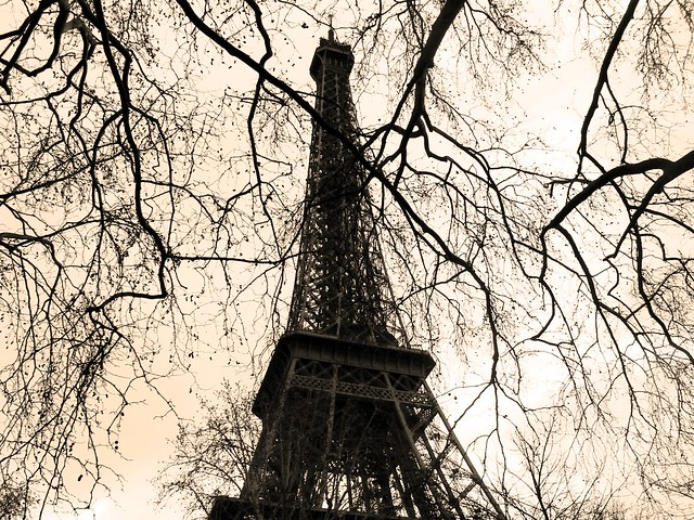 Torre Eiffel.-