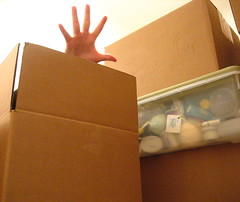 36/365: An' the BOXES'll git you Ef you Don't Watch Out!