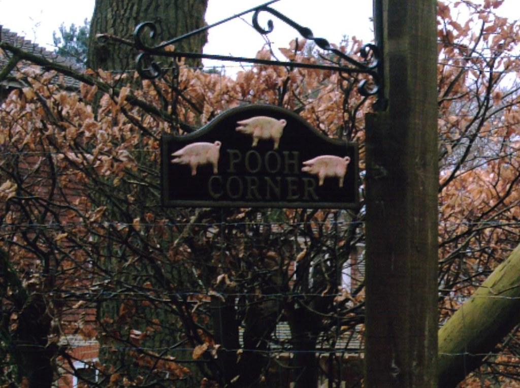 Farnham to Godalming Pooh Corner. Follow the 3 pigs to find The Donkey!? D.Allen Vivitar 5199 5mp