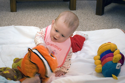 Bayleigh playin' with Nemo