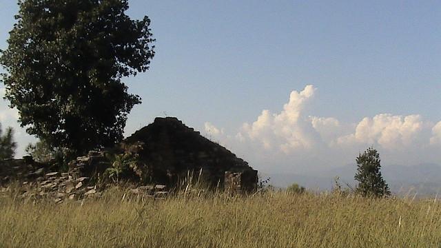hut in fields