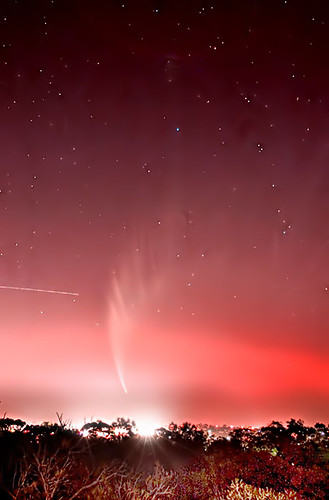 Comet McNaught in the stars