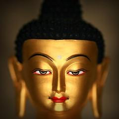 Ringflash Medicine Buddha