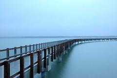 Taylor Docks