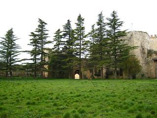 Изображение Castello di Lombardia. italy enna ruins sicily