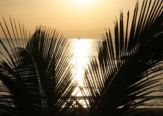 Image of Playa de Fañabe near Playa de las Américas. sunset sea beach evening sailing tenerife sail romantic canaryislands hisgett fanabebeach ortegalrestaurant