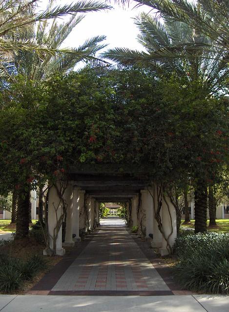 USF CampusUsf Campus