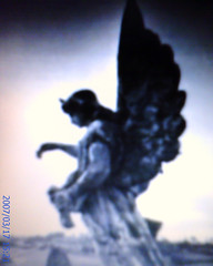 Angel, 2007/03/17.15:32