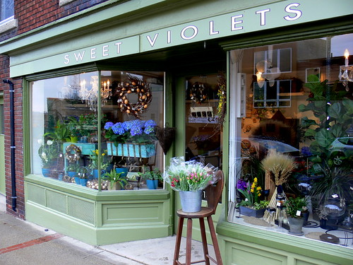 Spring at the Flower Shop by Corbeau du Nord