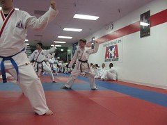 tang soo do(0.0), hapkido(1.0), individual sports(1.0), contact sport(1.0), taekwondo(1.0), sports(1.0), combat sport(1.0), martial arts(1.0), karate(1.0), japanese martial arts(1.0),