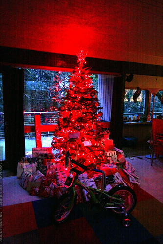 xmas tree with gifts    MG 7316