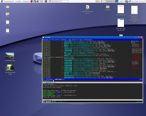 Schermafdruk | Gentoo Linux with GNOME 2 16, xterm, screen a