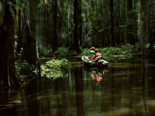 caddo lake fishing flickr photo sharing
