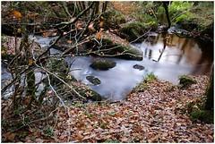 Les Gorges du Corong - St Nicodème - Bretagne / 2006