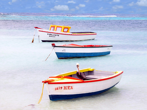 Aruba Boats & Pelican by msprago