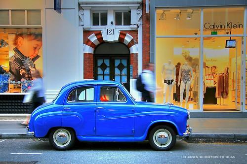 Bluey (#355)