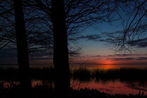 sunset nature water magnoliapark pentaxk10d lakeapopka pentaxda1224mmf4