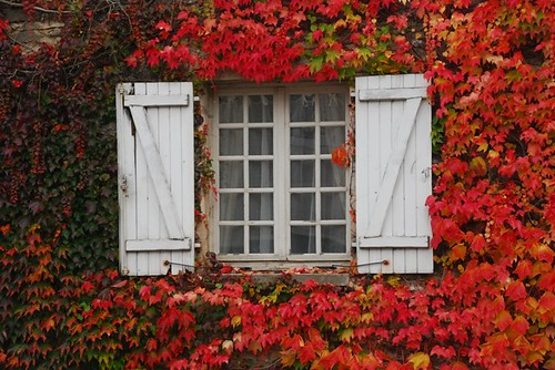 Farmhouse window in Burgundy