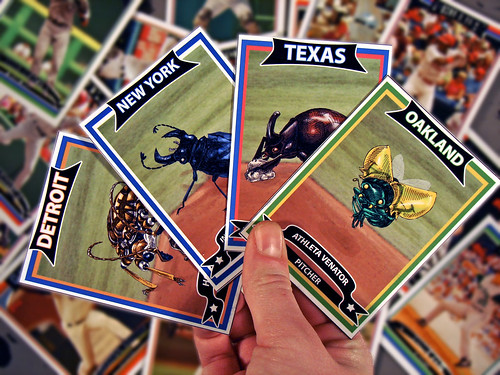 beetleball cards