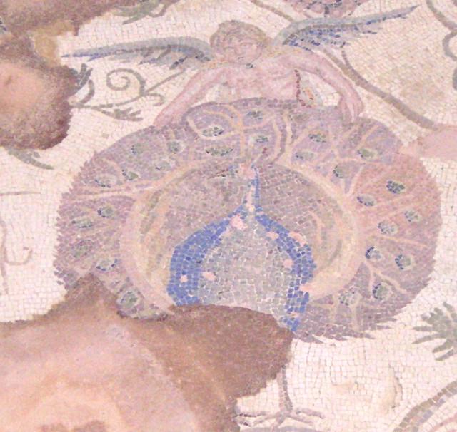 Header of Paphos