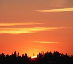 Seattle sunset, January 2007