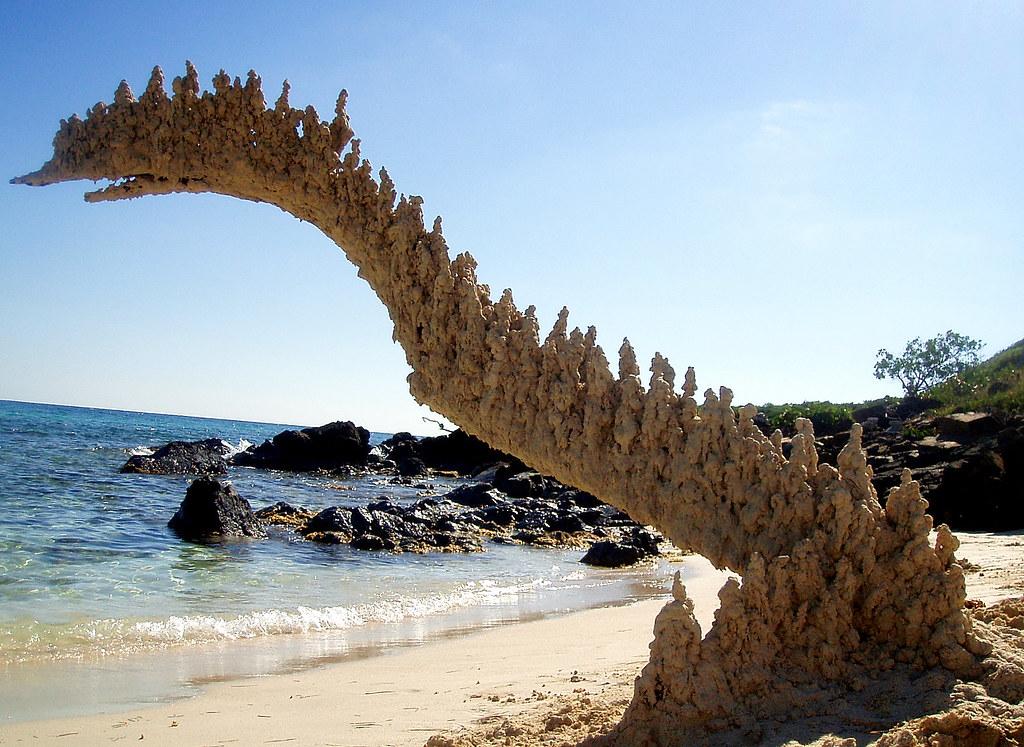 sand dinosaur profile