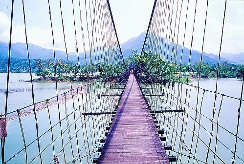 Q526大埔情人公園吊橋