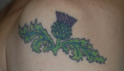 Scottish Thistles Tattoos